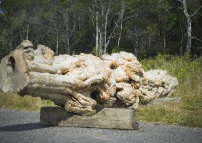 Huon Pine for Sale